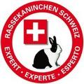 Logo SKEV